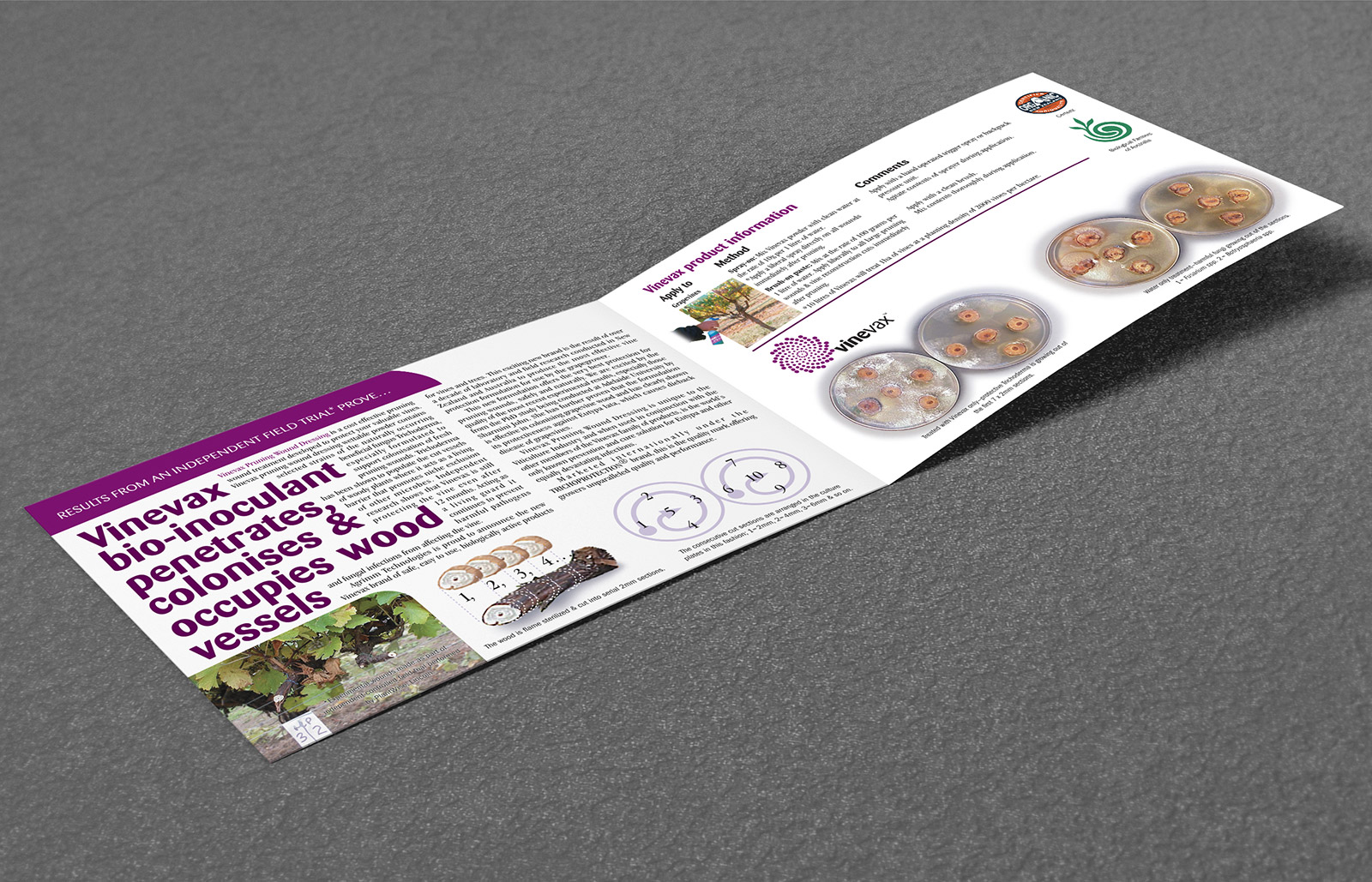 Vinevax PWD brochure redesign inside spread