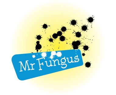 "Mr Fungus logo. Hand-lettered 'Mr Fungus' name white out of a cyan blue rhombus, with a spatter of black ink spots on a yellow gradient background. Mr Fungus is a comic character ""the world's loudest mime"" developed by Fergus Aitken, Entertainer, educator, 'international comic mime'. Brands for New Zealand / International companies. Wellington."