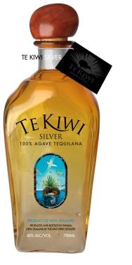 TeKiwi_bottle_draft_012-TeK_arc_painting
