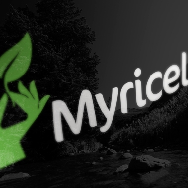 Myricell logo on black glass, Beech tree, Lewis pass reflection