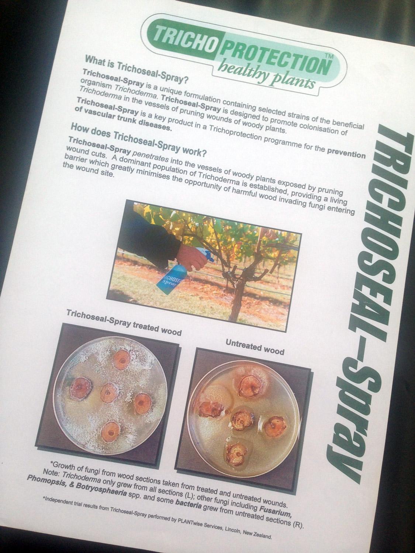 Vinevax brochure before