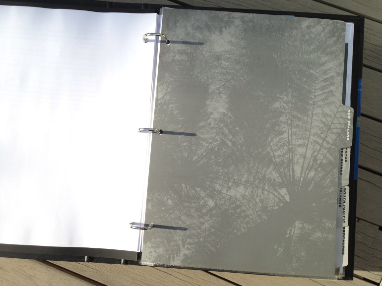 Affluent Travel Agency Toolkit. New Zealand tabbed section divider. Radiating Treefern canopy.