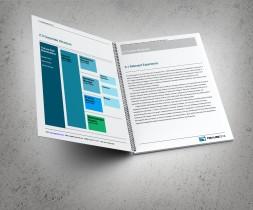Corporate Structure, Relevant Experience spread. TruLine Civil Tender bid document
