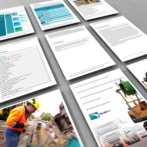 Perspective M=montage of 9 sample pages of the TruLine Civil Tender bid document