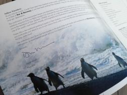 Kerr_and_Downey_Classic_NZ_Js_Brox-1467