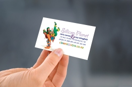 Silli_bus_card-hand_held-03
