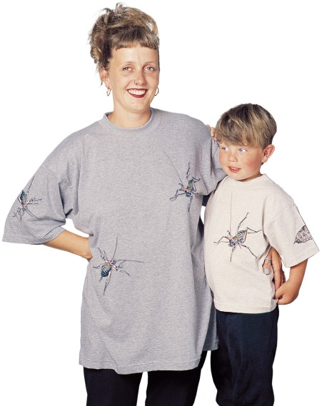 'Weta - New Zealand' T-shirt, adults and kids, on oatmeal and grey marle fabric.