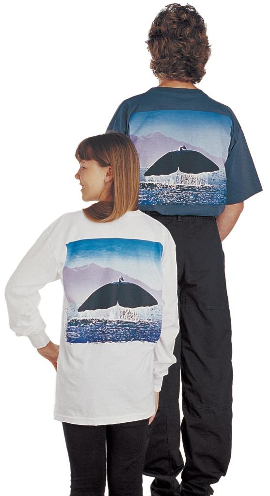 'Sperm Whale - Kaikoura New Zealand' T-shirt, five colour print on white or dark blue-green fabric.
