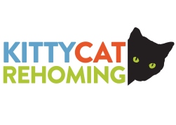 The cat silhouette and jewel like eyes create a focal point, a logo that is immediately recognised while her off-the-edge cropping, peaking around a corner at the end of the block of type appears timid and curious.