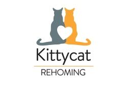 KittyCat_logo_presentation-8