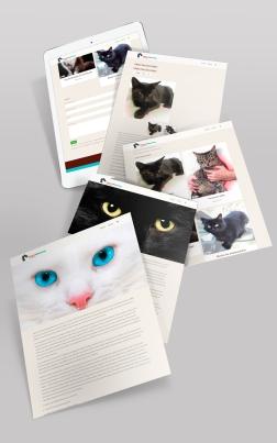 Kittycat_Rehoming_iPad_mock