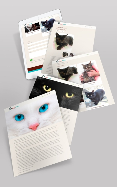 Kittycat_Rehoming_iPad_mock