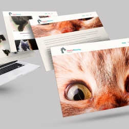 KittyCat_Rehoming_Macbook-Mockup