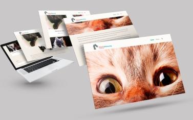 KittyCat_Rehoming_Macbook-Mockup