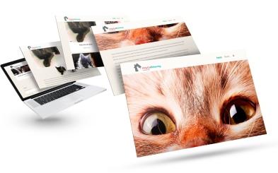 KittyCat_Rehoming_white_bgr_Macbook-Mockup