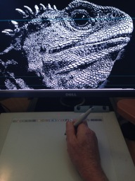 cleaning up the high-resolution-scanned Tuatara artwork drawing with a stylus