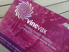 Vinevax PWD brochure redesign cover detail 1
