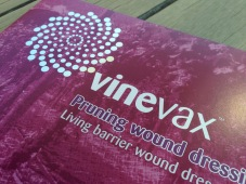 Vinevax PWD brochure redesign cover detail 2