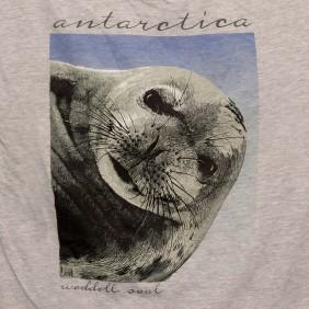Antarctic Centre Wedddell Seal - Antarctica hand screenprint on grey marle T-shirt