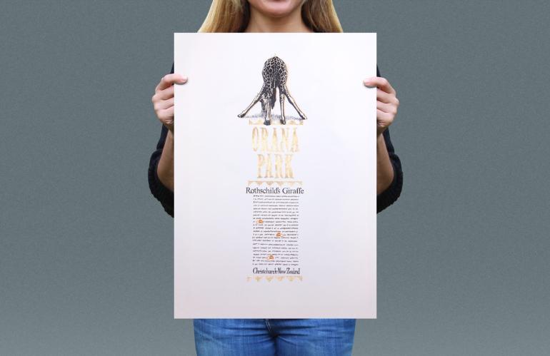 Visual presentation of Rothschild's Giraffe T-shirt back