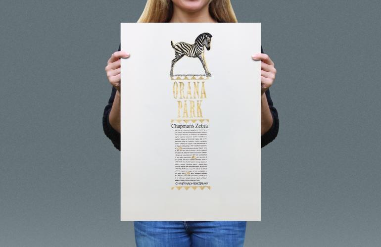 Visual presentation of Chapman's Zebra T-shirt back