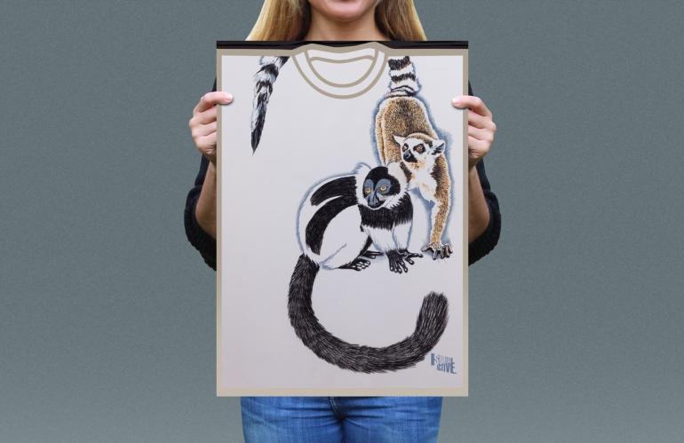 Visual presentation of Ruffed Lemur, Ring-tailed Lemur T-shirt front