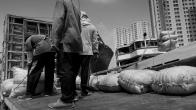 Sunda_Kelapa_old_port-9890